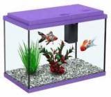 Как выбрать аквариум: критерии, фильтры, компрессоры, грунт, советы для начинающих