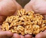Як правильно їсти горіхи?..