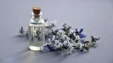 Названы запахи, помогающие держать аппетит под контролем