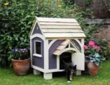 Как приучить кошку в дом и когтеточке?